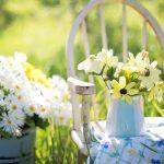 Creëer een heerlijke zomerse tuin